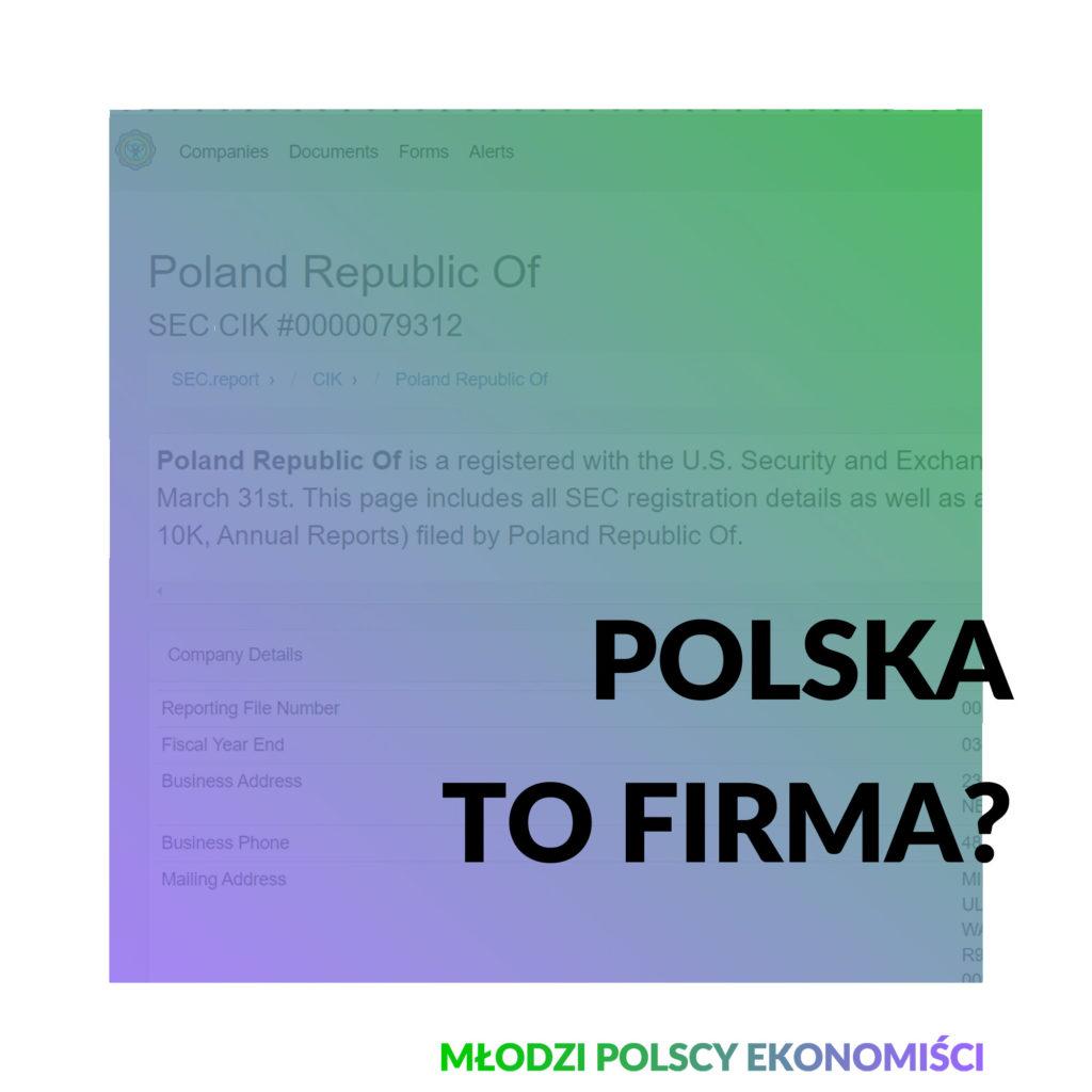 polska firma usa